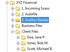 Auditor Review