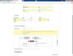 Cities Digital_Laserfiche Forms_Payment